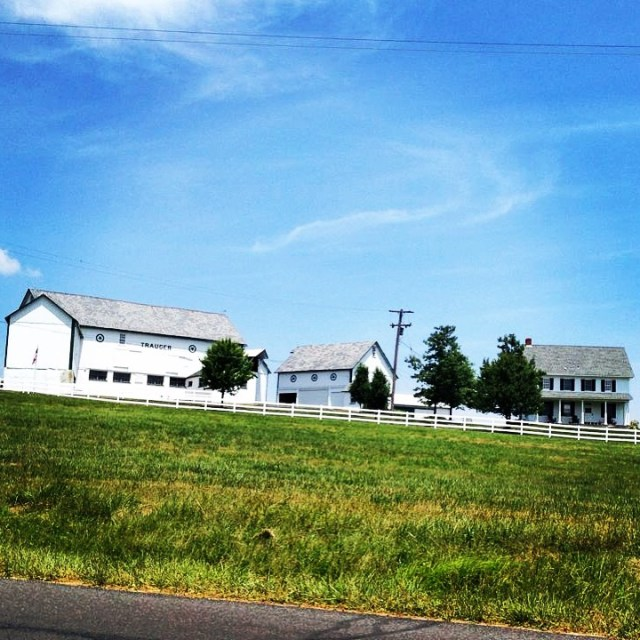 Trauger's Farm, Kintnersville, PA