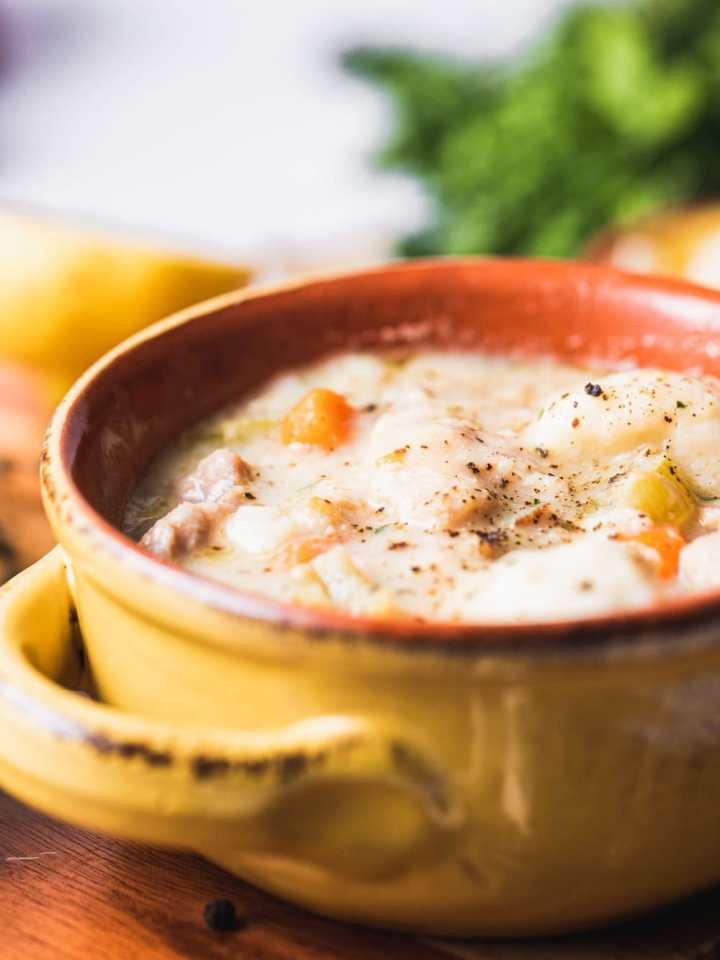 close up of chicken and dumplings in a soup bowl