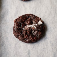 Vegan Flourless Fudge Cookies {vegan, GF}
