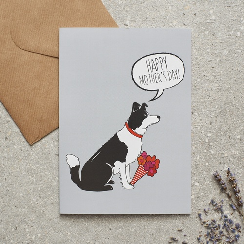 Border Collie Mothers Day Card 275 Mischievous Mutts
