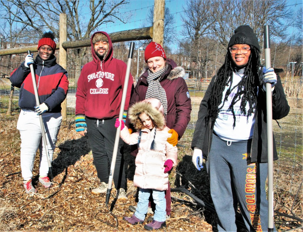 Young Hannah is not to be denied her chance to pitch in with other volunteers at the MLK Day clean up activities at the Bartram's Garden Sankofa Farm