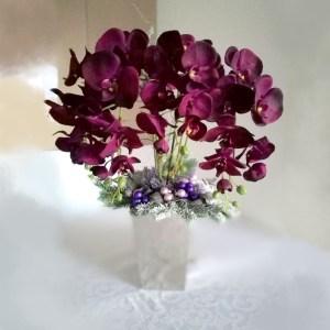 Świąteczny storczyk w fiolecie