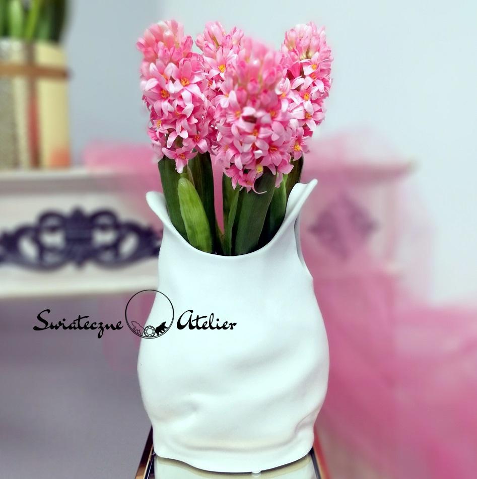 Hiacynt różowy