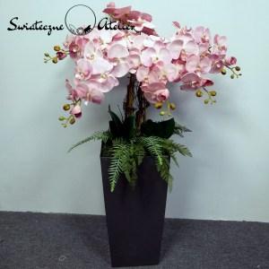 Różowe storczyki w szarej donicy nr 447
