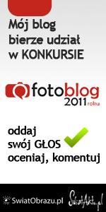 Mój blog bierze udział w konkursie Fotoblog 2011 roku