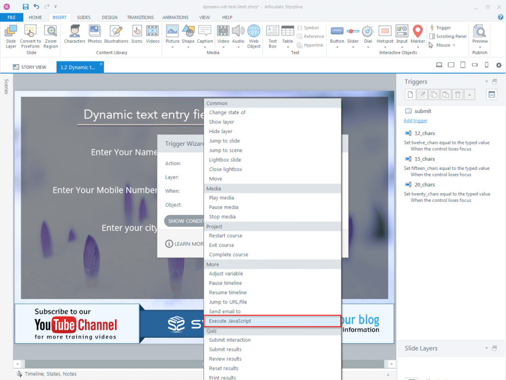 How to set Character limit for a dynamic text entry field in Articulate Storyline-step06