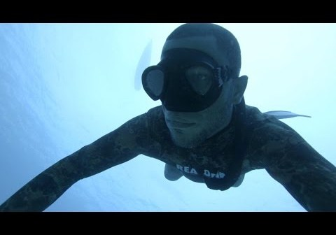 The Plunge and the Spike: Spearfishing the Caribbean Blue