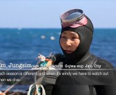 Korea's Haenyeo Female Freedivers Brave Freezing Waters and a Changing Culture