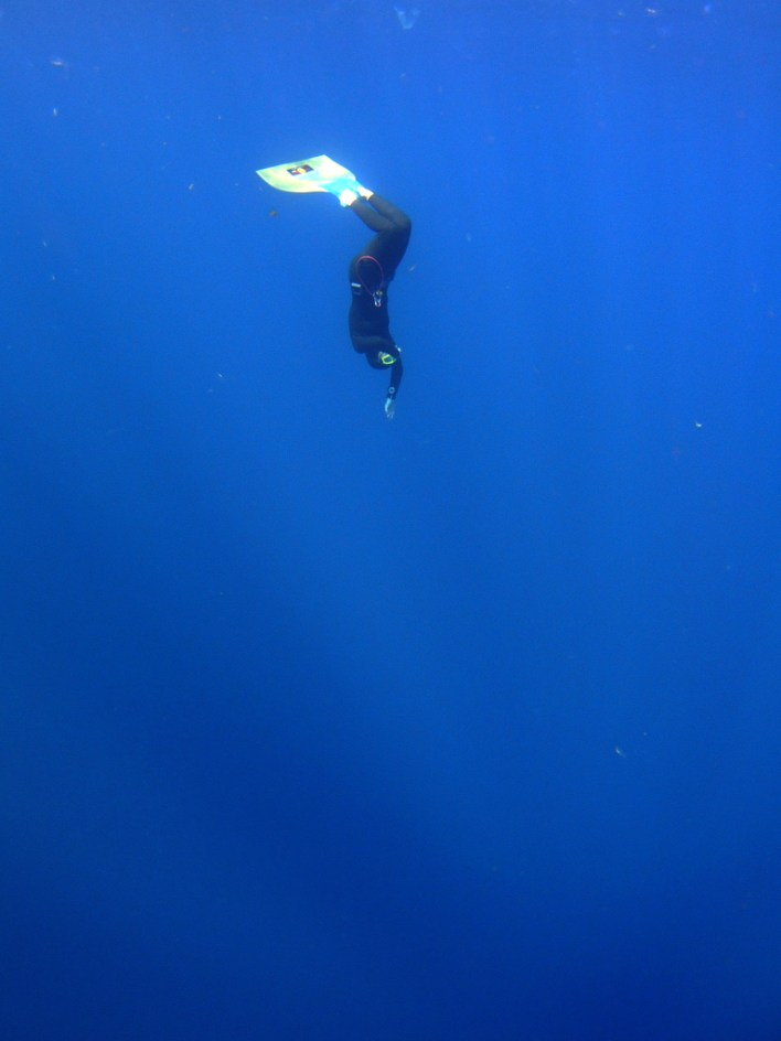 freediver photo