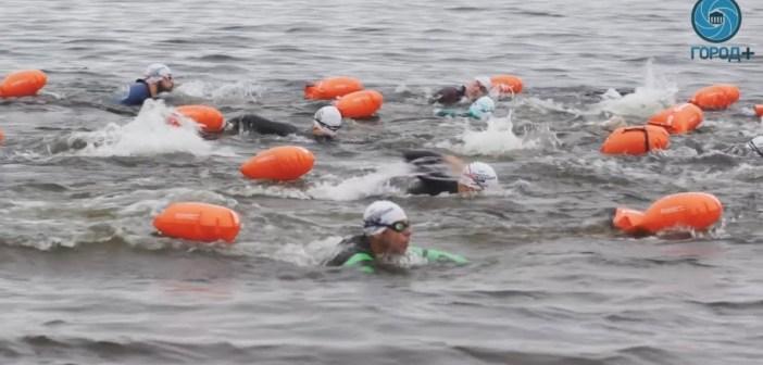 600 take plunge in unusual St Petersburg swim