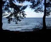 SCSU swim team captain saves 3 swimmers in Lake Superior while on vacation