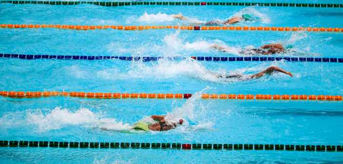 people doing swim race