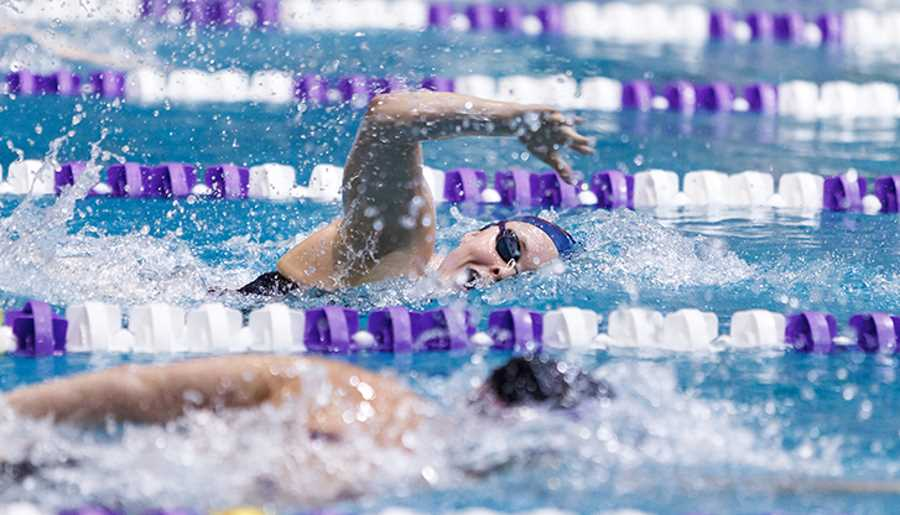 The Liberty University Swimming and Diving team competes against James Madison University on January 17, 2014. (Photo by Joel Coleman)
