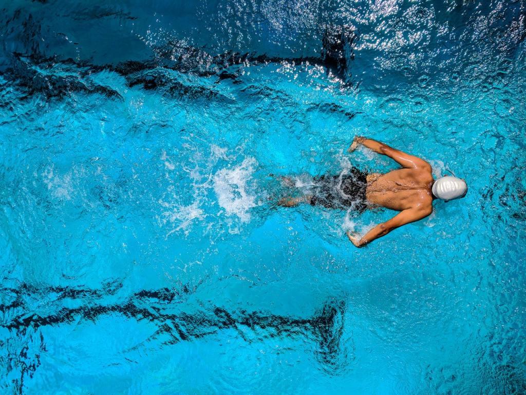 butterfly-swimmer-pool