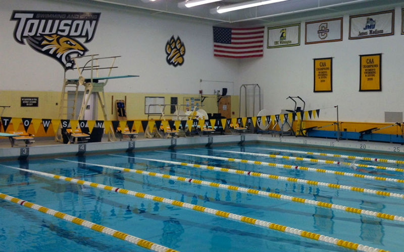towson tigers pool