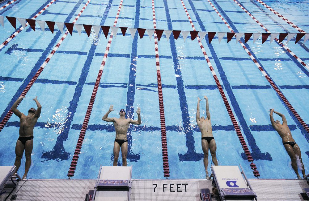 Competitors dive in during the 100 yard backstroke during a swim meet between Columbia and Harvard Universities at Harvard College on Friday November 16, 2018. Photo by Joseph Prezioso