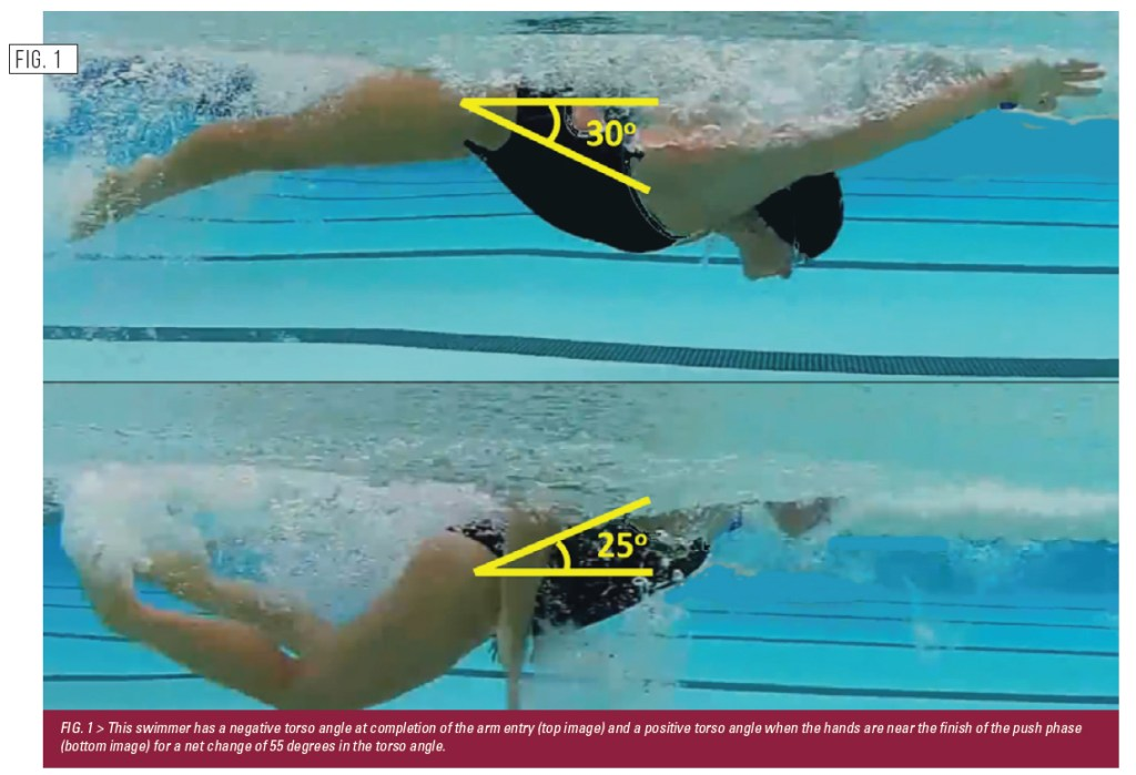 pic one swimming concepts