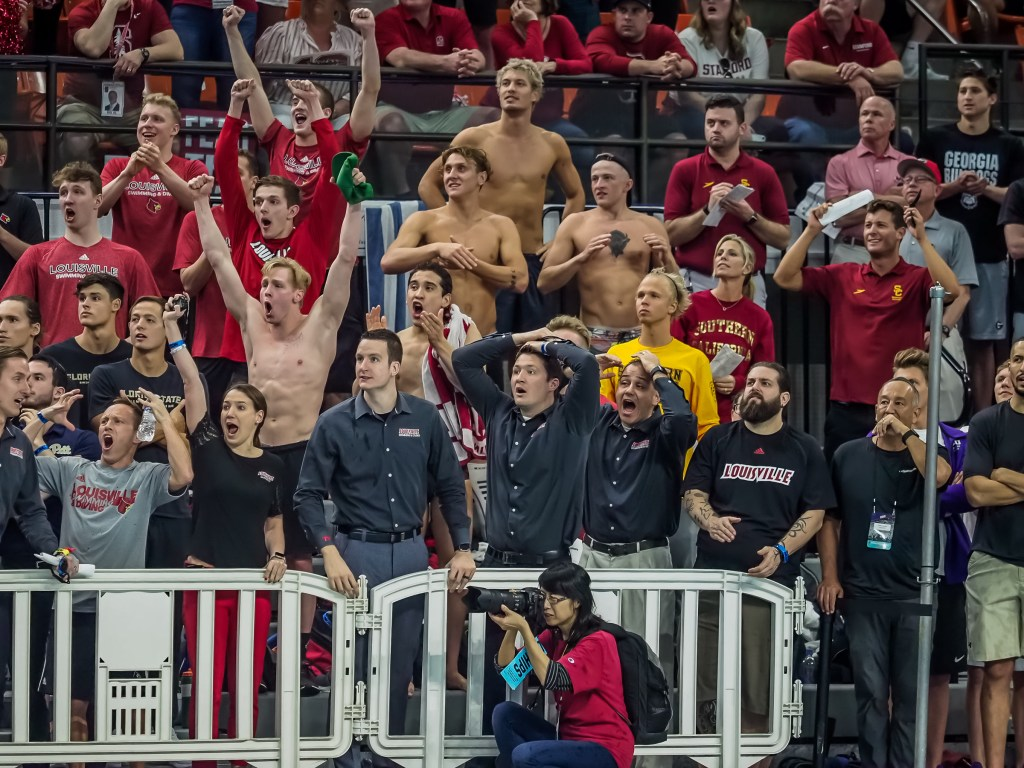louisville-swimming-diving