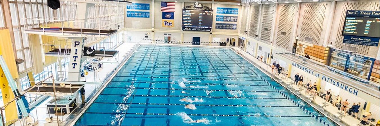 Pitt Swimming Camps Trees Pool