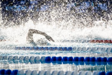 Recent Swimming News - All Categories