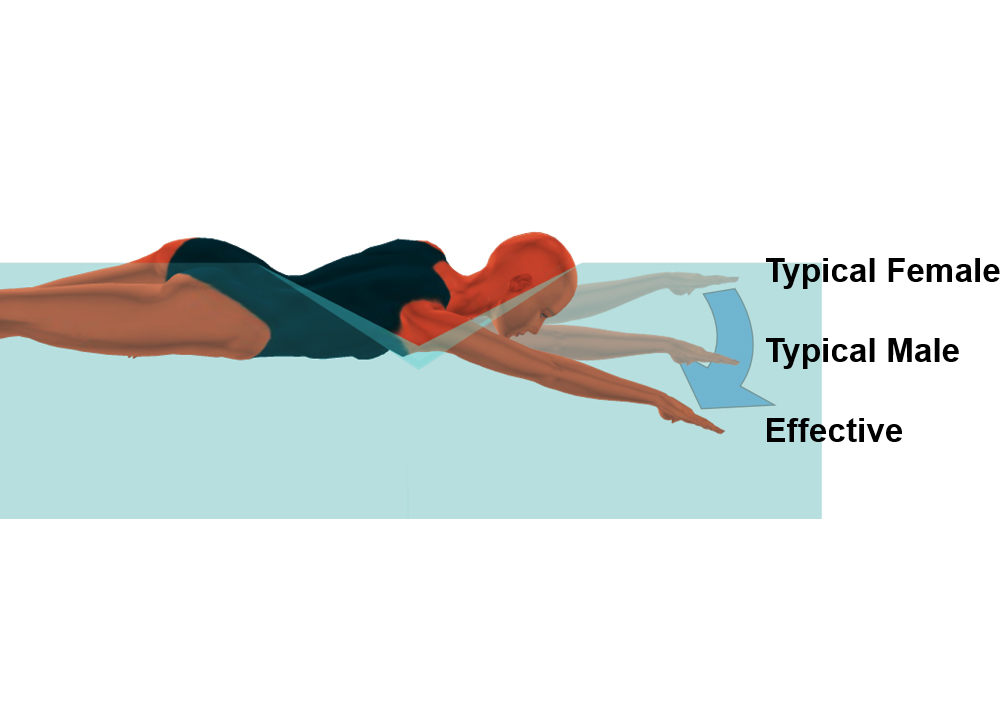 Swimming World October 2019 Swimming Technique Concepts Shoulder Injury Prevention for the Freestyle Arm Entry Rod Havriluk