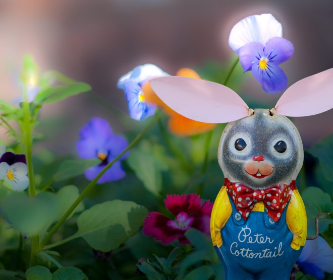 PAWPeterRabbitFlowers