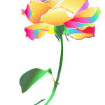 Rainbow Rose illustrated by Patricia Wiskur