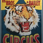 Ringling Bros. and Barnum & Bailey Roaring Tiger Poster