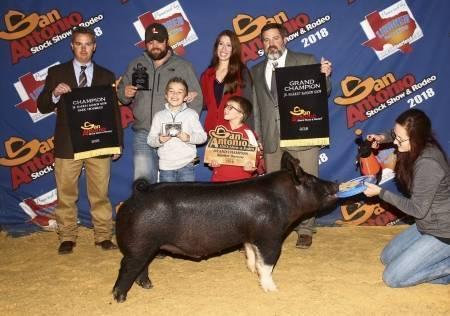 Swine Genetics International View Boar