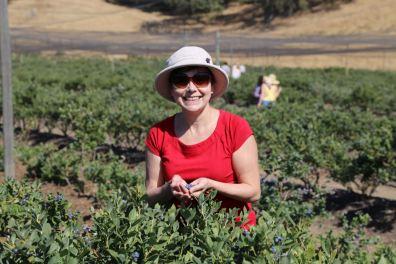 Blueberry Picking 2015