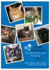 blue holiday purr and fur 2013 two