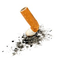 En av många cigarettfimpar