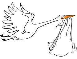 Storken på väg
