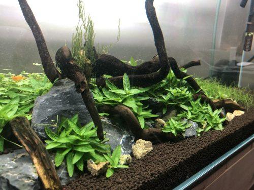 small resolution of aquarium diy co2 kit citric acid vinegar and baking soda