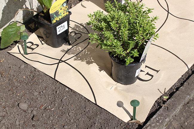 Garden Stakes Homebase