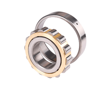Cylindrical roller bearings N-type