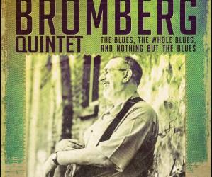 David-Bromberg-poster-8.5-x-11
