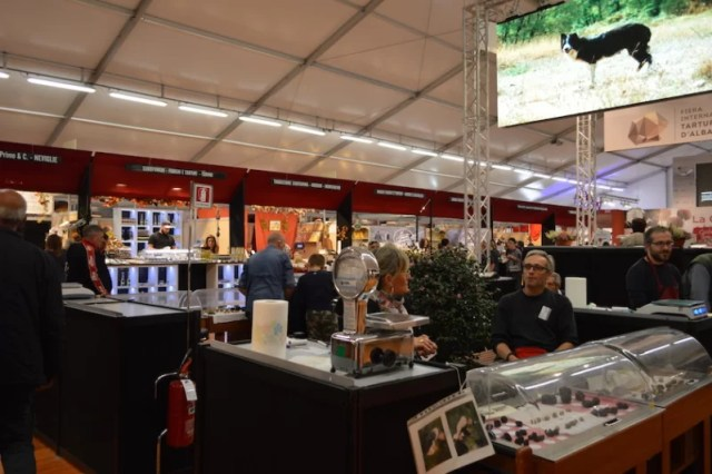 Truffle Hunters in International White Truffle Festival of Alba, Italy