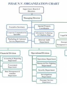 Organizational structure of virgin blue business analysis group essay the also term paper academic service rh fjpaperyepmpay