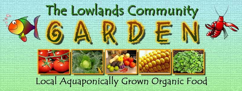 260713-lowlands1