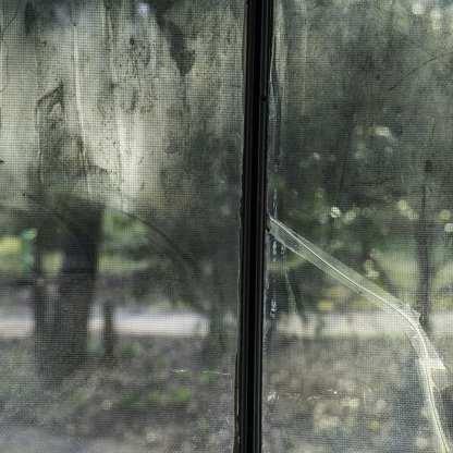 Window in Kitchen ©Lucinda Bunnen