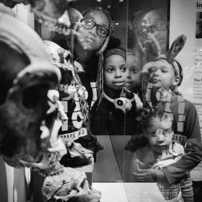 Harvard Museum ©Kristen Emack