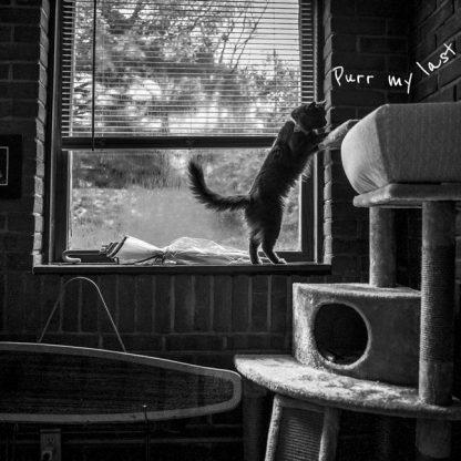 Pearl ©Camille Fine