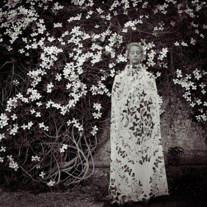 The Garden at Lacock ©Lori Vrba
