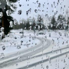 Lapland Journey #10 ©Carole Glauber