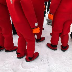 Lapland Journey #5 ©Carole Glauber