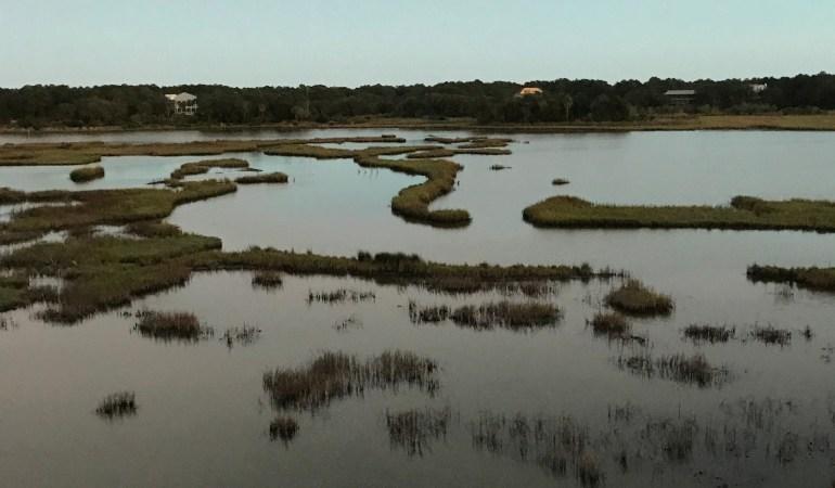 Dewees Island, SC ©Nancy McCrary