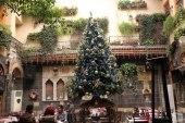 مليون ليرة ثمن شجرة عيد الميلاد في سوريا!