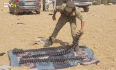 نبع السلام.. الجيش الوطني يحقق مزيداً من التقدم ويدمر دبابة للنظام