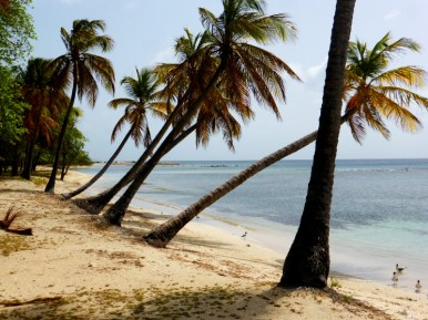 Mustique Beach_2